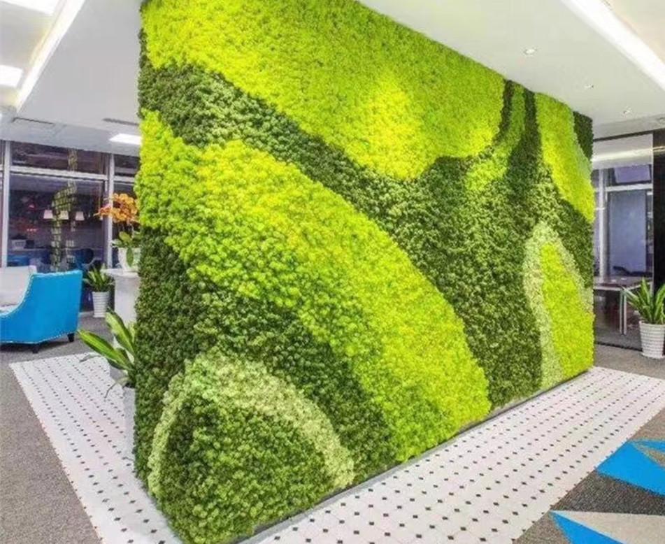 办公室苔藓植物墙