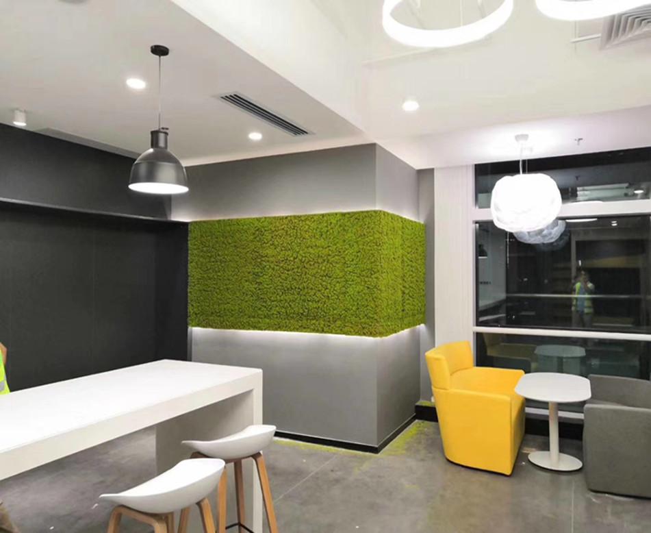 茶水间苔藓植物墙