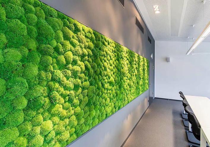 西安苔藓植物墙厂家