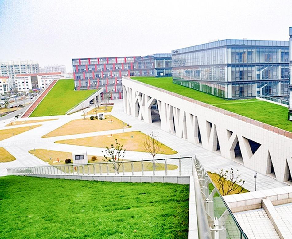 城市植被屋顶
