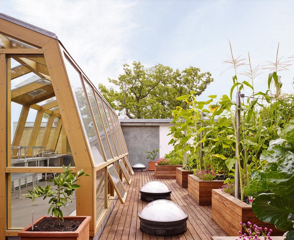 住宅区屋顶花园