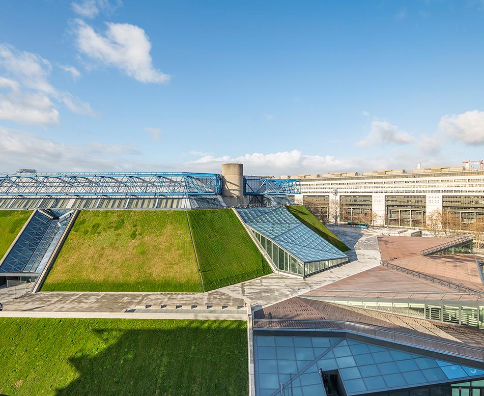 商业屋顶绿化