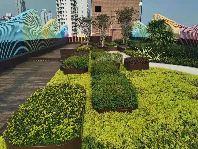 商业区屋顶绿化