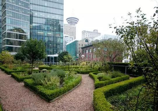 為什么說屋頂綠化是大勢所趨?