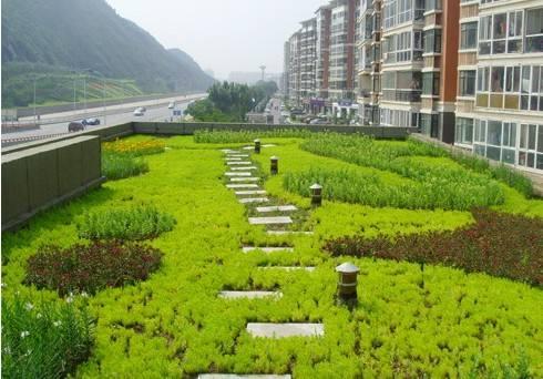 做屋頂綠化的注意事項