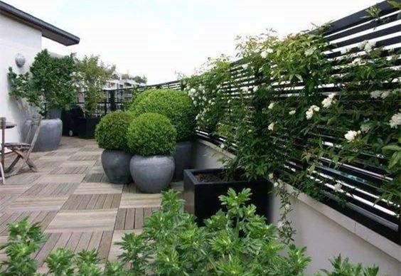 最全屋顶花园养护攻略