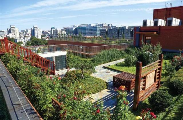 普通居民对屋顶绿化有哪些疑问?