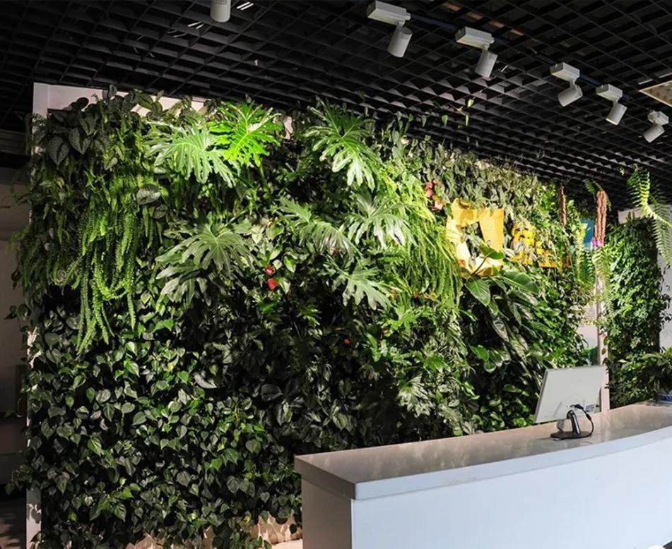 前台接待生态植物墙