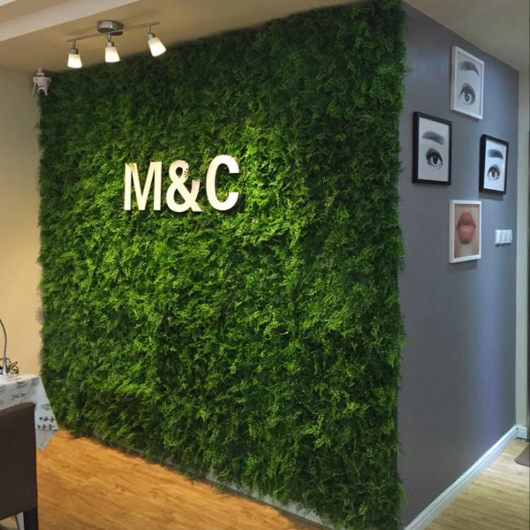 办公室内仿真植物墙