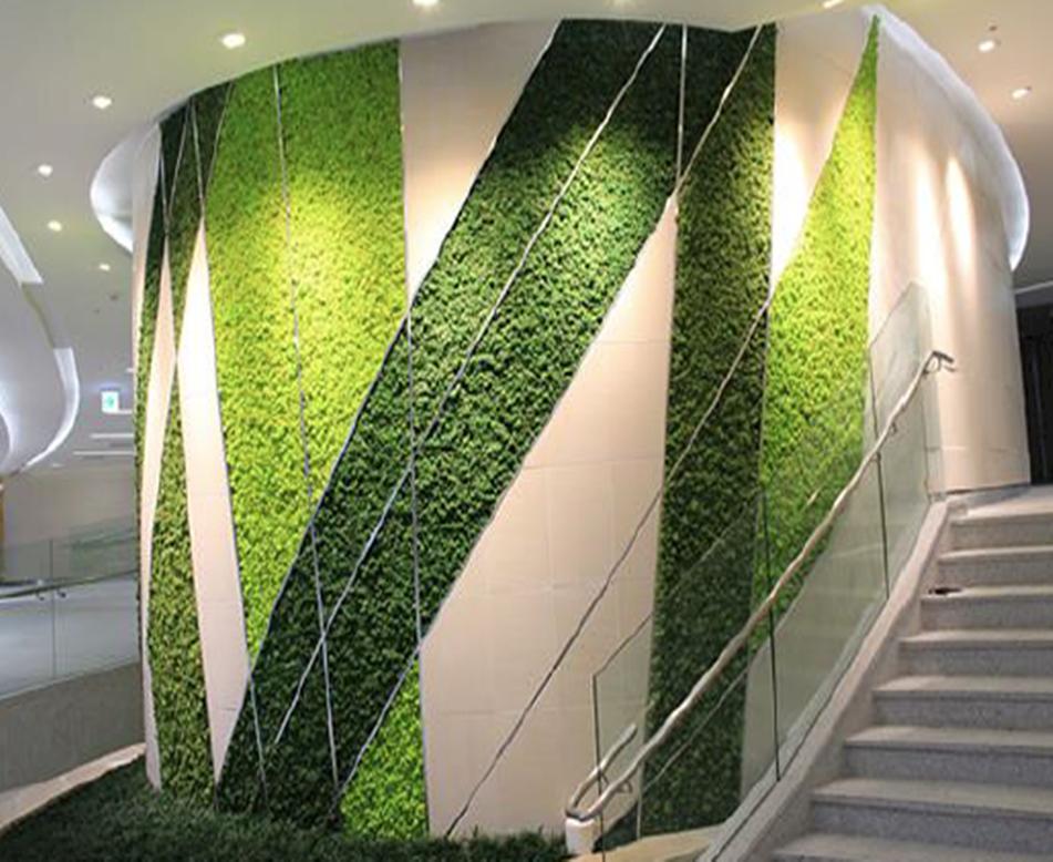 商场苔藓植物墙