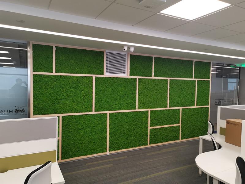 华为办公区苔藓植物墙打造
