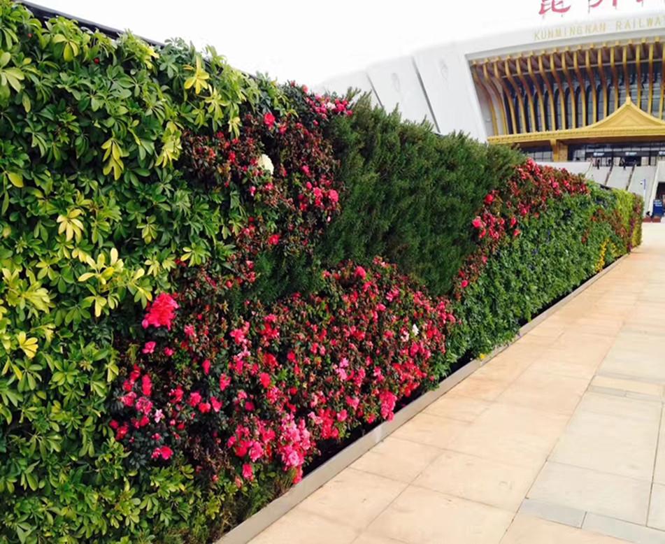 室外大型綠植墻施工