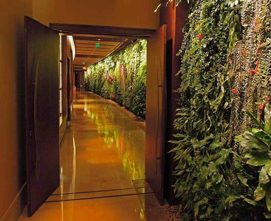 室内走廊植物墙打造文源景观