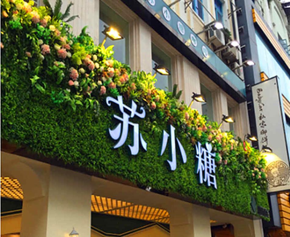 苏小糖仿真植物墙设计--文源景观