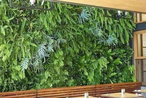 西安仿真植物墻廠家