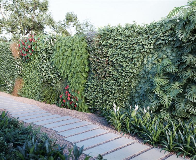 西安植物墻養護