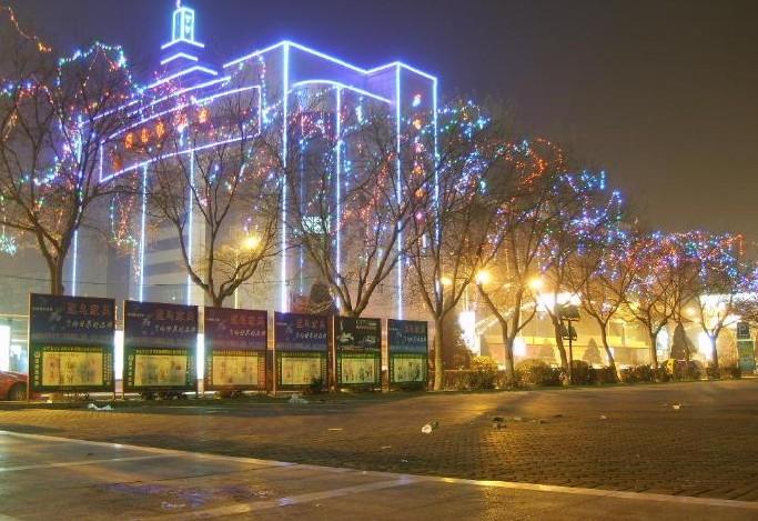 城市亮化(树)