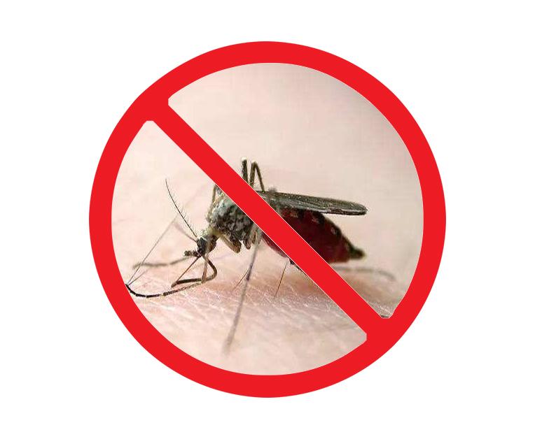 西安上门灭蚊子