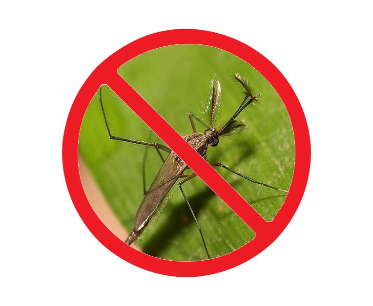 西安灭蚊蝇公司