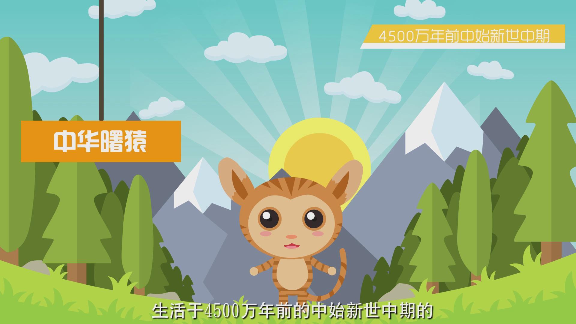 閻良區二維動畫案例-中華曙猿MG動畫