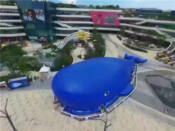 鯨魚島氣模道具租賃