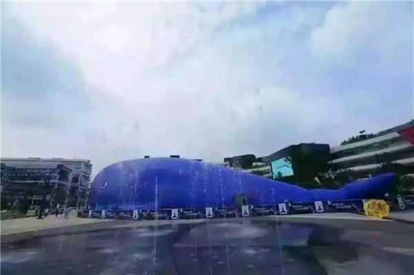 陜西鯨魚島樂園活動道具