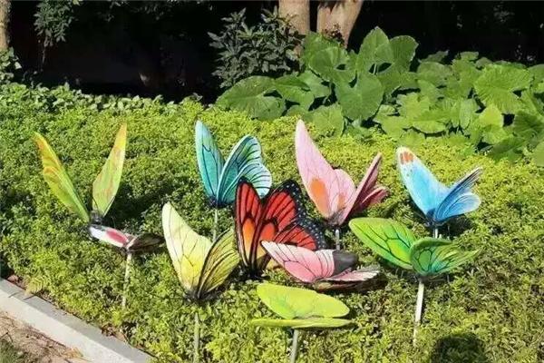 陜西蝴蝶展活動道具