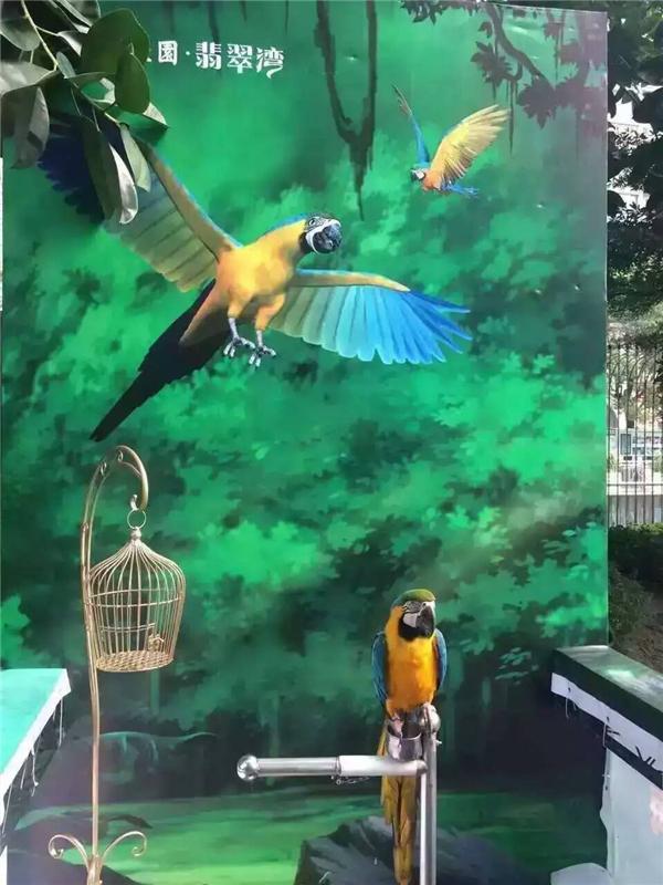 陜西百鳥展活動道具