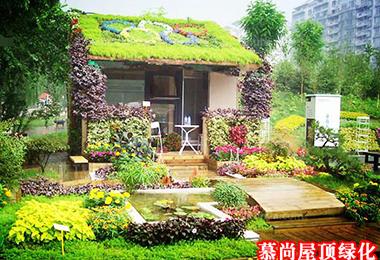 屋顶绿化花卉