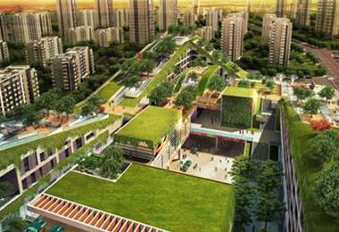 屋顶景观绿化