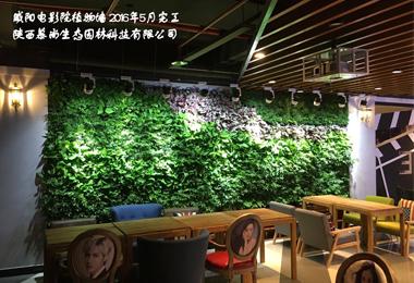 咸阳电影院室内植物墙