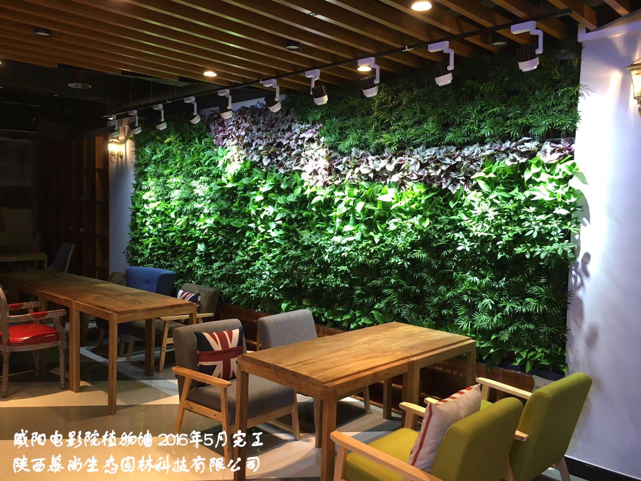 高层植物墙为什么更适合室外