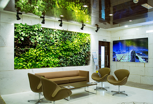 西安真植物墙
