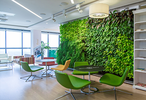 陕西植物墙