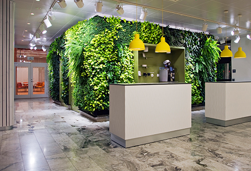 西安植物墙制作
