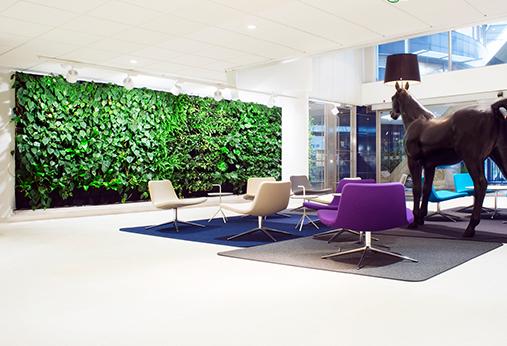 西安室内植物墙