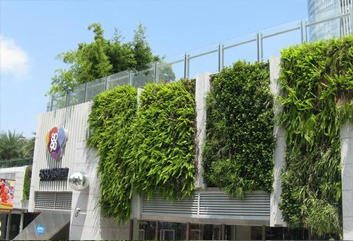 陕西绿化公司