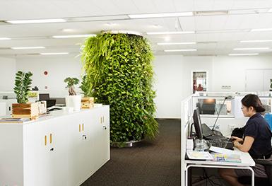 圆形植物墙
