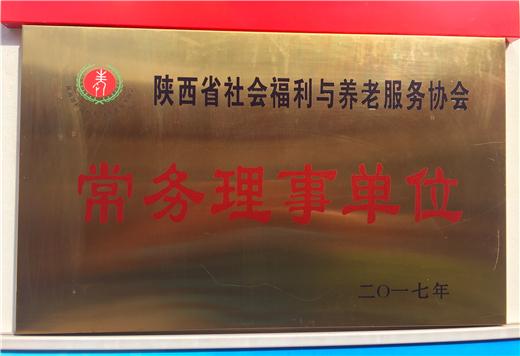 陕西省社会福利与养老服务协会常务理事单位