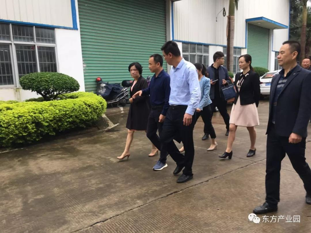 热烈欢迎陈副市长等领导调研考察东方产业园