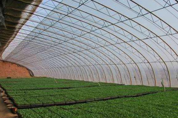 金华/丽水日光温室建设该怎样应对灾害性天气