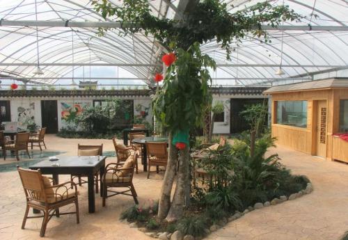 生态餐厅如何吸引客流?