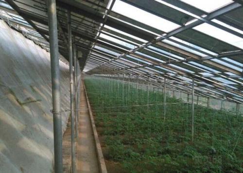 苏州日光温室