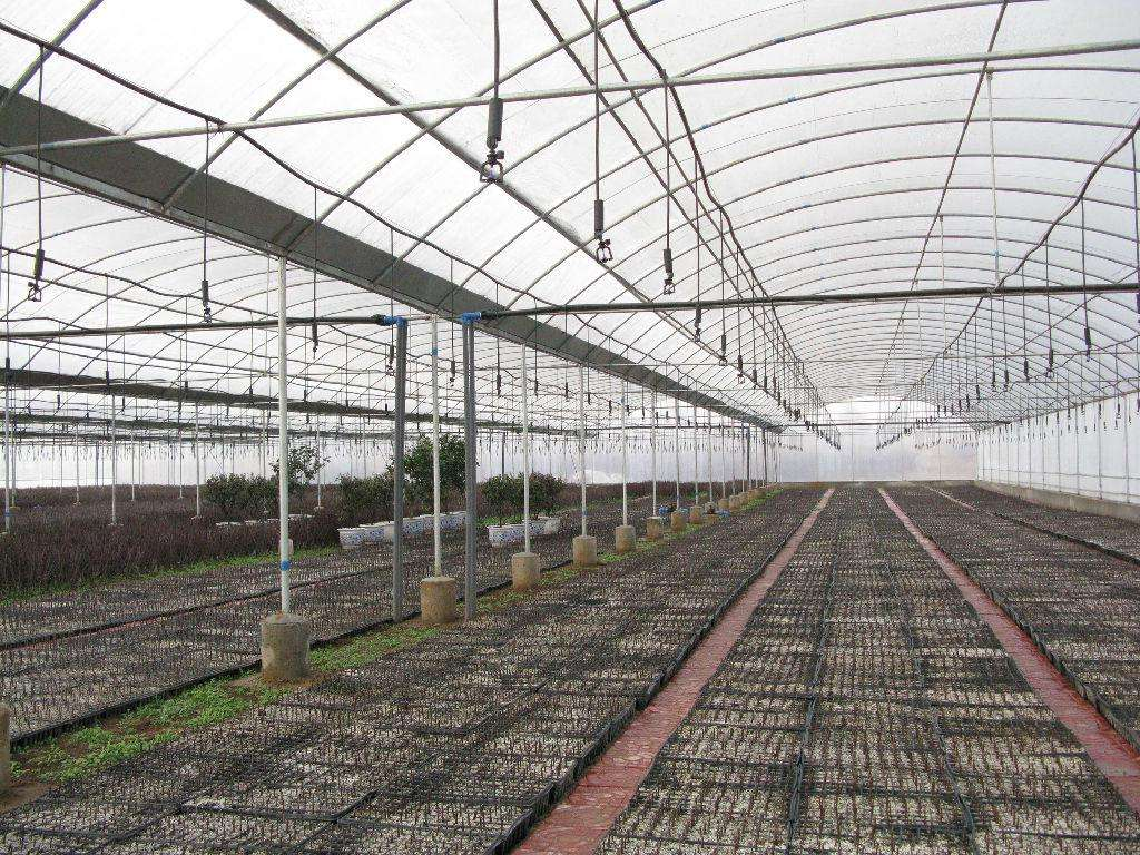 南京日光温室