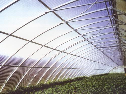 分析日光温室的保护原理与特点以及应对日光温室中的土壤变化的措施有哪些