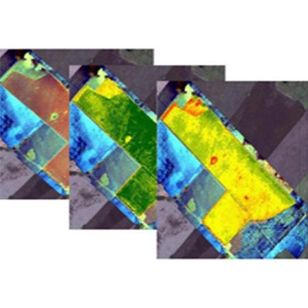 无人机NDVI指数图生产案例