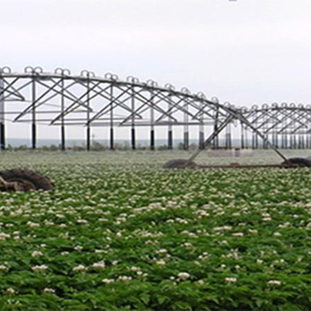 农机自动驾驶在内蒙马铃薯播种中的应用