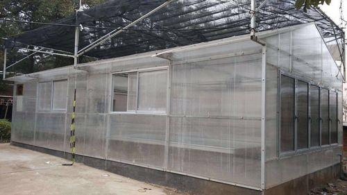 新型阳光板温室