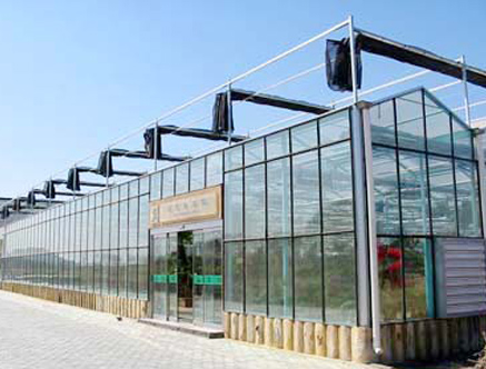 无土栽培玻璃智能温室大棚
