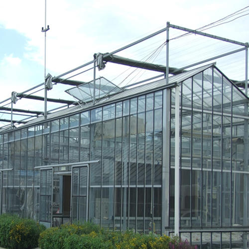 玻璃温室蔬菜大棚